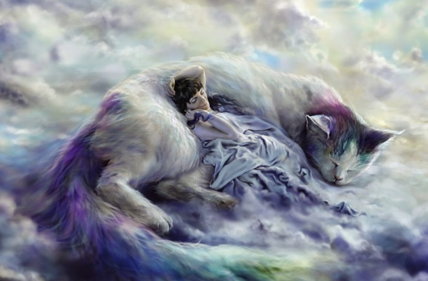 Dreaming Of Cats – Common Cat Dream Meaning And Interpretations